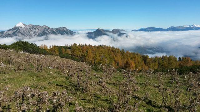 Razgled iz vrha na Kepo, Dovško Babo, Golico, Struško in Stol (od leve proti desni)