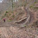 Cesta za spravilo lesa.