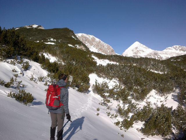 Pot proti Kalškemu grebenu ter razgled na Grintovec
