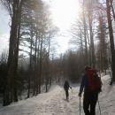 Pot na Snežnik