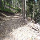 Za planince ni potrebna tako široka pot.