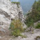 Vzhodna stran Vitranca precej prepadna-skalnata.