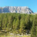 Razgled z izhodišča na vrh Monte Zermule (zadaj desno) in njen vzhodni greben (levo)