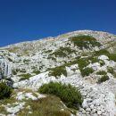 Razgled z poti na vršno pobočje Rombona