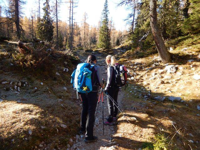 Nadaljnja pot proti Planini Ovčarija