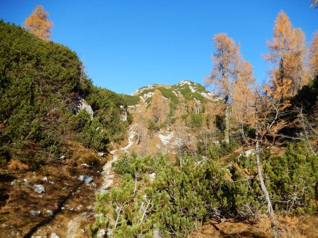 Pot proti Štapcam ter razgled na pobočje Male Tičarice