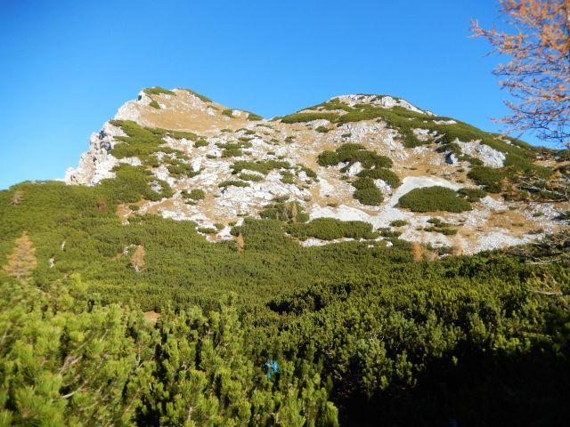 Razgled z poti na Malo Tičarico