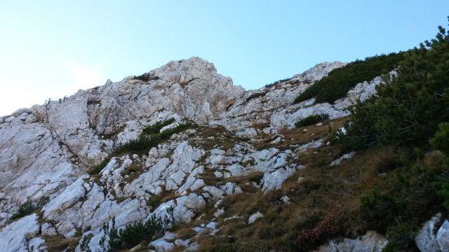 Pot na Veliko Tičarico je nekoliko bolj divja