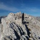 Malo pred vrhom Velike Zelnarice ...