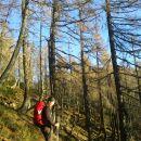 Pot proti Planini Polšak