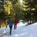 Pot proti Planini Bistrica/Hutte Oisternig