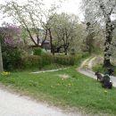 V zaselku se desno spuščamo po makedamski cesti ob gozdu.