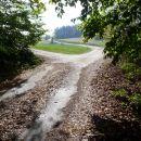 Ob prihodu iz gozda se asfalt konča, zavij levo po cesti.