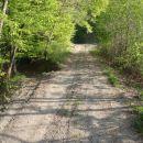 Nadaljuj po gozdni cesti.
