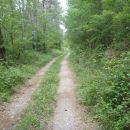 Cesta vzporedno z železniškim tirom.