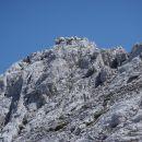 Štirinožna planinska ekipa.