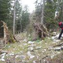 Koliko drv.