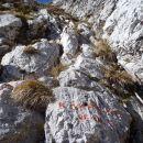 Prva in zadnja jeklenica do Kalške gore.