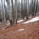 Med V.K. in SV. Lovrencom pa naletiva na krpice snega.