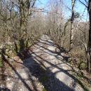 Del poti med Prešnico in Petrinjem.