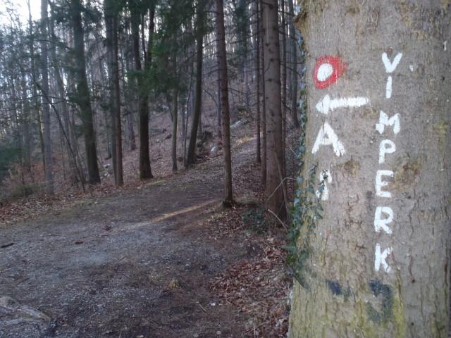20190215 Polzela-Oljka-Andraž-Velenje - foto