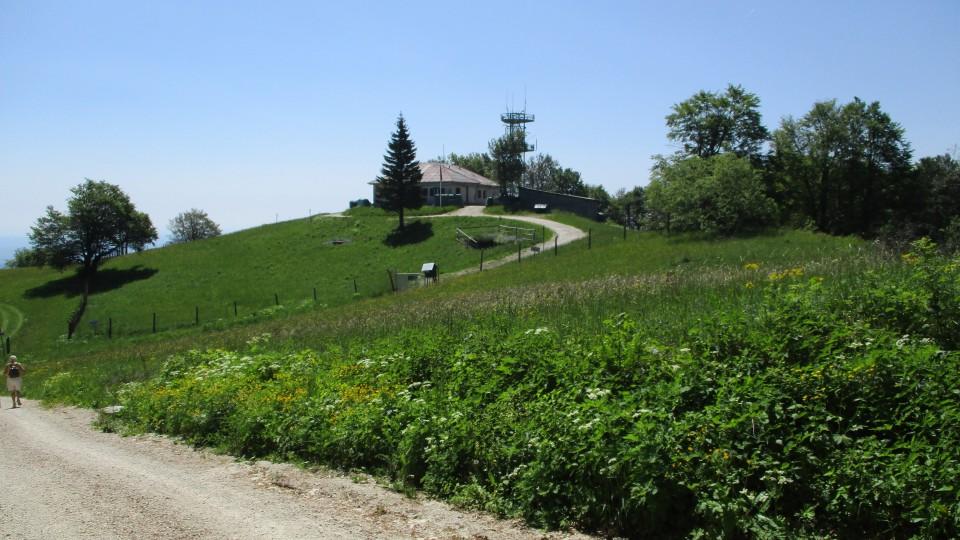 20190610 Trdinov vrh in Mirna gora - foto povečava