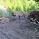 Pospravljanje lesa po neurjih.