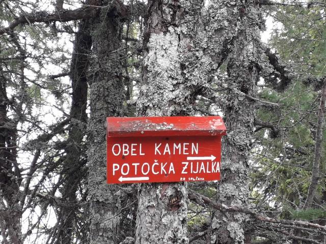 20190625 Sp.Sle,Govca,Obel,Felsentor,potočka  - foto