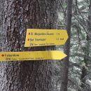 Sledi ogled Lipševih vrat - Felsentore 1508m.