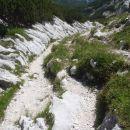 Pot za Črnim vrhom.