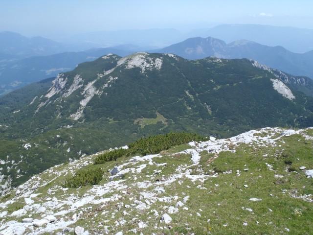 Dleskovec z vzpona na Vel. vrh.