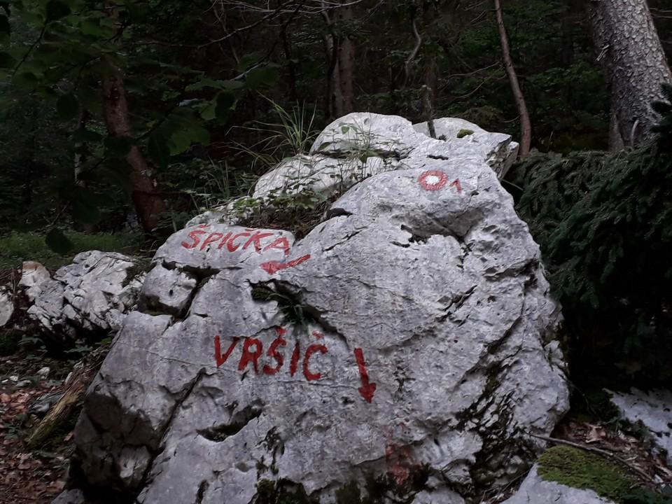 20190805 Jalovec - kralj SLO gora - foto povečava