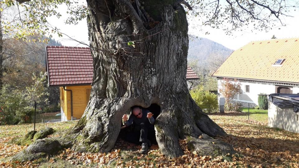 20191026 Laško-Malič-Šmohor-Tolsto-Hum - foto povečava