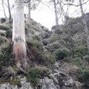 Vzpon na zelo izpostavljen zavarovan vrh Kopitnika.