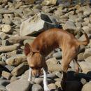 Na plaži...