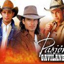 Los gavilanes: Franco, Juan, Oscar