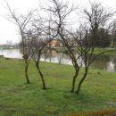 Poplave Murski Črnci - marec/april 2013
