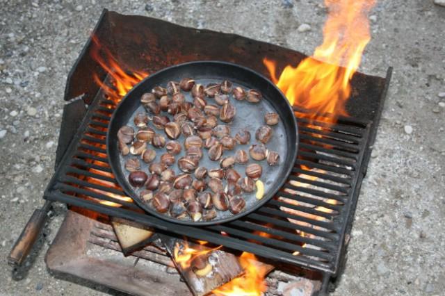 Kostanjev piknik pri Simonu-20. 10. 2007 - foto