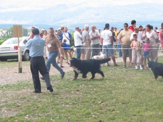 Sinj 2006 - foto